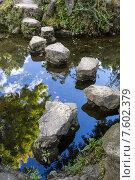 Купить «Красивый китайский сад, пруд и камни», фото № 7602379, снято 1 ноября 2014 г. (c) Василий Кочетков / Фотобанк Лори