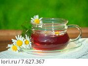 Купить «Чашка с чаем и цветами ромашки», фото № 7627367, снято 25 июня 2015 г. (c) Татьяна Белова / Фотобанк Лори