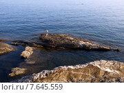 Морской пейзаж  со скалистым берегом  и мужчиной. Нерви (Nervi), пригород Генуи. 2015. Стоковое фото, фотограф Tanya  Polevaya / Фотобанк Лори