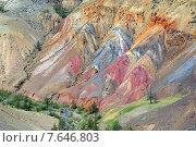 Купить «Разноцветные глины в горах Алтая», фото № 7646803, снято 12 июня 2015 г. (c) Михаил Коханчиков / Фотобанк Лори