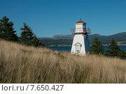 Woody Point Lighthouse at coast, Southeast Brook Falls, Gros Morne National Park, Newfoundland and Labrador, Canada. Стоковое фото, фотограф Keith Levit / Ingram Publishing / Фотобанк Лори
