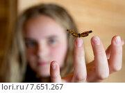 Купить «Butterfly perching on fingertip of a girl, Lake of The Woods, Ontario, Canada», фото № 7651267, снято 30 июня 2013 г. (c) Ingram Publishing / Фотобанк Лори