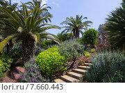Botanical garden of Barcelona in spring, Spain (2015 год). Редакционное фото, фотограф Яков Филимонов / Фотобанк Лори