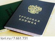 Купить «Трудовая книжка гражданина России», фото № 7661731, снято 12 сентября 2014 г. (c) Сергеев Валерий / Фотобанк Лори