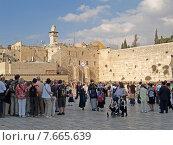 Купить «Паломники и туристы на площади перед Стеной Плача. Иерусалим, Израиль», фото № 7665639, снято 9 октября 2012 г. (c) Ирина Борсученко / Фотобанк Лори