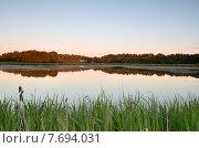 Озеро в лесу. Стоковое фото, фотограф Александер Ляпин / Фотобанк Лори