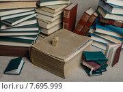 Книги новые, старые и очень старые. Толстые и тяжелые, большие и очень маленькие. Стоковое фото, фотограф Владимир Вдовиченко / Фотобанк Лори