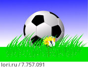 Купить «green summer sport spring ball», фото № 7757091, снято 26 марта 2019 г. (c) PantherMedia / Фотобанк Лори