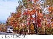 Купить «america foliage indian buzzer camper», фото № 7967451, снято 10 декабря 2018 г. (c) PantherMedia / Фотобанк Лори