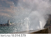 Купить «water sea ocean wall tropical», фото № 8014579, снято 22 февраля 2019 г. (c) PantherMedia / Фотобанк Лори