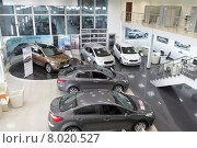 Купить «Москва, продажа новых автомобилей фирмы KIA Motors», эксклюзивное фото № 8020527, снято 21 июля 2015 г. (c) Дмитрий Неумоин / Фотобанк Лори