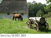Купить «summer building house horse cart», фото № 8091363, снято 19 сентября 2019 г. (c) PantherMedia / Фотобанк Лори