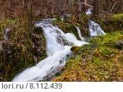 Купить «Mountains stream with moss stones at forest», фото № 8112439, снято 9 декабря 2014 г. (c) Яков Филимонов / Фотобанк Лори