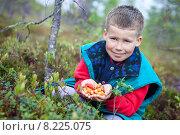Купить «Мальчик сидит на болоте в лесу со спелыми ягодами морошки в ладонях», фото № 8225075, снято 19 июля 2015 г. (c) Кекяляйнен Андрей / Фотобанк Лори