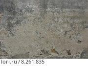 Купить «old wall trappings weatherworn ailing», фото № 8261835, снято 19 марта 2019 г. (c) PantherMedia / Фотобанк Лори