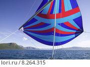 Купить «yacht sail norway spinnaker bergkulisse», фото № 8264315, снято 22 марта 2019 г. (c) PantherMedia / Фотобанк Лори