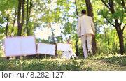 Купить «Молодожены гуляют в солнечном парке», видеоролик № 8282127, снято 18 июня 2015 г. (c) Tatiana Kravchenko / Фотобанк Лори