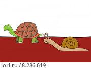 Купить «race - snail and tortoise», фото № 8286619, снято 13 декабря 2018 г. (c) PantherMedia / Фотобанк Лори
