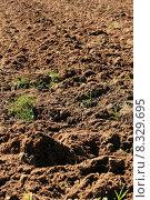 Купить «soil», фото № 8329695, снято 17 июня 2019 г. (c) PantherMedia / Фотобанк Лори