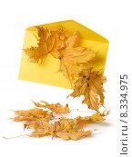 yellow communication autumn fall letter. Стоковое фото, фотограф Irina Drazowa-Fischer / PantherMedia / Фотобанк Лори