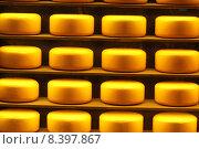 Сыр на витрине магазина. Стоковое фото, фотограф demon15 / Фотобанк Лори