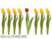 Купить «spring money rust contrast symmetry», фото № 8430343, снято 22 апреля 2019 г. (c) PantherMedia / Фотобанк Лори