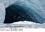 Купить «ice glacier arctic svalbard spitzbergen», фото № 8440183, снято 18 ноября 2018 г. (c) PantherMedia / Фотобанк Лори