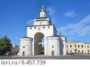 Купить «Владимир, Золотые ворота», фото № 8457739, снято 23 июня 2012 г. (c) Овчинникова Ирина / Фотобанк Лори