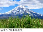 Корякский вулкан. Камчатка (2015 год). Стоковое фото, фотограф Оксана Дудкина / Фотобанк Лори