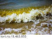 Морская волна. Стоковое фото, фотограф Виктор Аксёнов / Фотобанк Лори