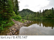 Купить «Вид на реку Бия. Алтай», фото № 8470147, снято 7 августа 2014 г. (c) Александр Карпенко / Фотобанк Лори