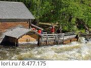 Купить «Старая мельница Myllykoski в Национальном парке Оуланка», фото № 8477175, снято 7 июля 2015 г. (c) Валерия Попова / Фотобанк Лори