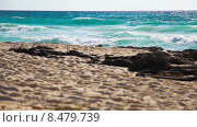 Морские волны. Стоковое видео, видеограф Денис Беляевский / Фотобанк Лори