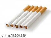 Купить «smoke smoking cigarette smoker whiff», фото № 8500959, снято 19 июля 2019 г. (c) PantherMedia / Фотобанк Лори