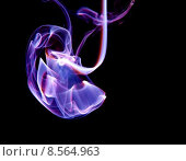 Купить «Smoke cloud», фото № 8564963, снято 23 марта 2019 г. (c) PantherMedia / Фотобанк Лори