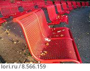 Купить «autumn fall chairs array void», фото № 8566159, снято 24 августа 2019 г. (c) PantherMedia / Фотобанк Лори
