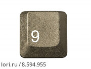 Купить «computer key in a keyboard with letter, number and symbols», фото № 8594955, снято 15 июня 2019 г. (c) PantherMedia / Фотобанк Лори