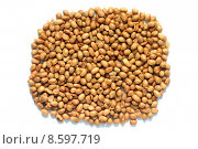 Купить «Soya nuts isolated on a white background», фото № 8597719, снято 20 января 2020 г. (c) PantherMedia / Фотобанк Лори