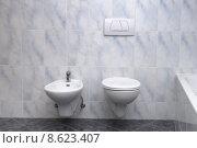 Купить «flow bathroom toilet bidet washroom», фото № 8623407, снято 21 марта 2019 г. (c) PantherMedia / Фотобанк Лори