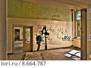 Купить «architecture historical ruin expiration grafitti», фото № 8664787, снято 23 февраля 2019 г. (c) PantherMedia / Фотобанк Лори