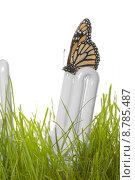 Купить «Eco Lightbulb Concept», фото № 8785487, снято 24 августа 2019 г. (c) PantherMedia / Фотобанк Лори
