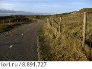 Купить «path dunes bicycle nenlandschaft zandvoort», фото № 8891727, снято 23 марта 2019 г. (c) PantherMedia / Фотобанк Лори