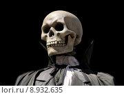 Купить «grim reaper death skeleton», фото № 8932635, снято 18 ноября 2017 г. (c) PantherMedia / Фотобанк Лори