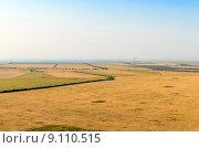 Купить «Крымская степь, вид с высоты 90 метров», фото № 9110515, снято 7 июля 2015 г. (c) Ивашков Александр / Фотобанк Лори
