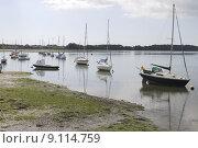 Купить «Tidal inlet. Dell Quay. West Sussex. UK», фото № 9114759, снято 26 июня 2019 г. (c) PantherMedia / Фотобанк Лори