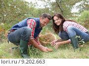 Купить «Mushrooms season», фото № 9202663, снято 19 марта 2019 г. (c) PantherMedia / Фотобанк Лори