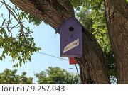 Купить «Скворечник на дереве сдается за 3 рубля. Евпатория», фото № 9257043, снято 9 июля 2015 г. (c) Ивашков Александр / Фотобанк Лори