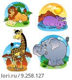 Купить «Various tropical animals 1», иллюстрация № 9258127 (c) PantherMedia / Фотобанк Лори
