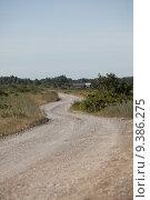 Купить «Dirt road», фото № 9386275, снято 16 октября 2018 г. (c) PantherMedia / Фотобанк Лори