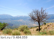 Купить «nature tree mountain scenery countryside», фото № 9484059, снято 18 октября 2018 г. (c) PantherMedia / Фотобанк Лори